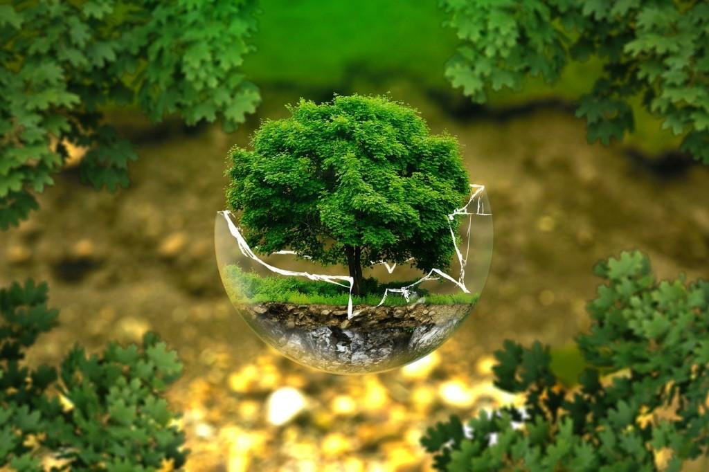 オーガニックとは、土壌から製品になるまで環境に配慮した製造を行っています