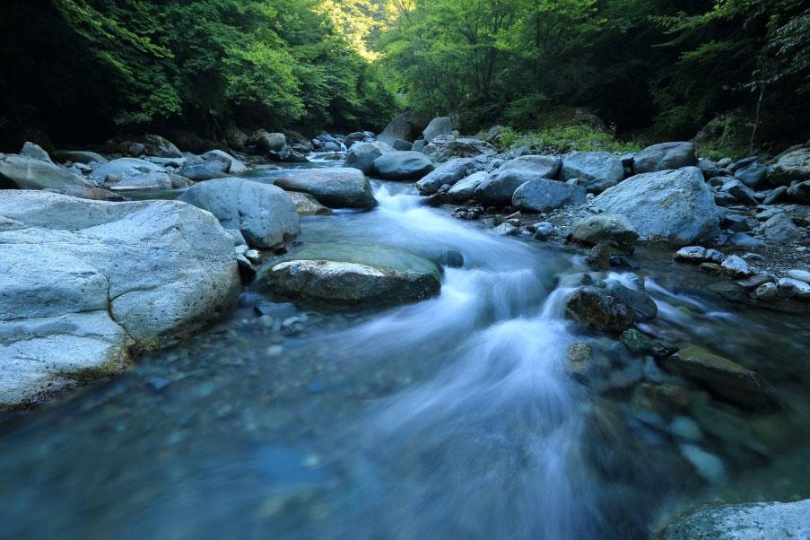 自然に生きる自然と生きる~体の水回りを整える~